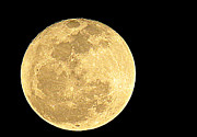 Heavenly Body Prints - Full Moon Print by William Cronk