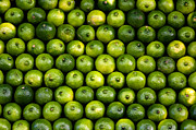 Shutterstock Prints - Full Shot of Whole Limes Print by Dennis Beck