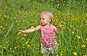 Looking Sideways Prints - Fun in the Meadow Print by Valerie Garner