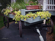 Flower Display Prints - Funeral Wagon Print by Brian Wallace