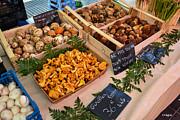 Allen Sheffield - Fungi at the Market