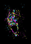 Screaming Digital Art Posters - Funky Poster by Balazs Solti