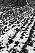 Landscape Photo Posters - Furrows Poster by John Farnan