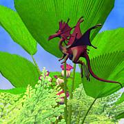 Corey Ford - Fury Flying Dragon