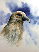 Hawk Paintings - Fury by Sam Sidders