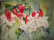 Fushia Painting Framed Prints - Fushia Fandango Framed Print by Margaret Older