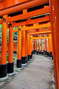 Torii Photos - Fushimi Inari shrine Kyoto Japan by Fototrav Print