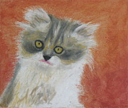 Animals Pastels Originals - Fuzzy Kitten by Jeanne Fischer