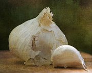 Still Life Prints - G is for Garlic Print by Juli Scalzi