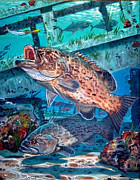 Ocean Turtle Paintings - Gag Grouper In0030 by Carey Chen