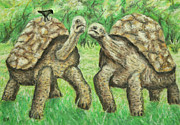 Selection Painting Posters - Galapagos Giant Tortoise Poster by Ronald Haber