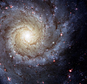 Outer Space Photos - Galaxy Swirl by The  Vault