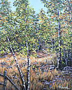 Reno Nevada Painting Prints - Galena Creek Birches Print by Julie Townsend
