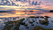 Peaceful Scene Prints - Galiano Island Pink Sunrise Print by James Wheeler