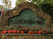 Galinburg In Autumn Print by Dan Sproul