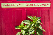 Frank Winters - Gallery Parking Only