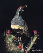 Board Game Mixed Media - Gambels Quail by Joseph Robertson