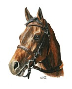 Thoroughbred Horse Posters - Game On Dude Poster by Pat DeLong