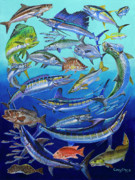 Dolphin Art Paintings - Gamefish Collage In0031 by Carey Chen
