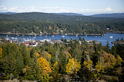 Saltspring Photo Originals - Ganges Harbour Satspring by Graham Foulkes