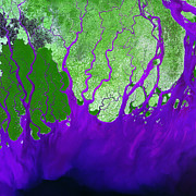 Ganges Art - Ganges River Delta by USGS Landsat