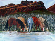 Salt River Wild Horses Paintings - Gangs All Here by Cheryl Newbanks