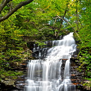 Escalator Prints - Ganoga Falls Ricketts Glen Print by Robert Harmon