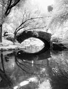Gapstow Bridge Vertical Infrared Print by Dave Beckerman