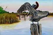 Fauna Painting Metal Prints - Gar Lake Pelican 2 Metal Print by Phyllis Beiser