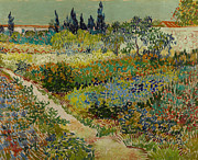 Arles Painting Framed Prints - Garden at Arles Framed Print by Vincent Van Gogh