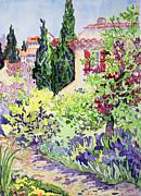 Garden At Vaison Print by Julia Gibson