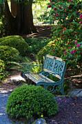Marilyn Wilson - Garden Bench at Hatley Park Gardens