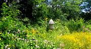 Lois Lepisto - Garden Birdhouse