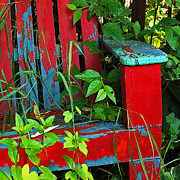 Old Chair Posters - Garden Chair Poster by Randy Hall