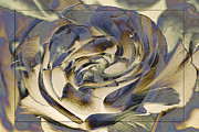 Flower_press Prints - Garden Dreams - Abstract by Jean OKeeffe Print by Jean OKeeffe