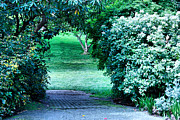 Cheryl Young Metal Prints - Garden Entrance Metal Print by Cheryl Young