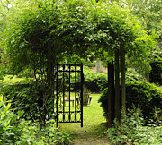 Addie Hocynec Art Prints - Garden Gate Print by Addie Hocynec