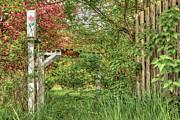 Brenda Giasson - Garden Gate