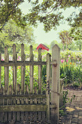 Painted Garden Gate Framed Prints - Garden Gate Framed Print by Margie Hurwich