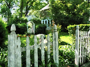 Fences Prints - Garden Gate Print by Susan Savad