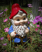 Judy Hall-folde Art - Garden Gnome by Judy Hall-Folde
