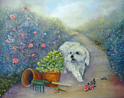 White Maltese Originals - Garden Path by Loretta Luglio