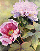 Sarah Buell Dowling - Garden Peonies