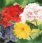 Phlox Painting Framed Prints - Garden Phlox Framed Print by Susan Crossman Buscho