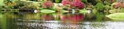 Garden Pond Print by Oscar Gutierrez