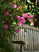 Maria Urso  - Garden Seat