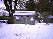 Kate Gallagher - Garden Shed in Winter