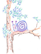 Snail Drawings Framed Prints - Garden Snail Framed Print by Regina Valluzzi