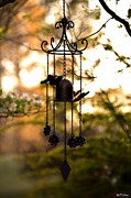 Wind Chimes Framed Prints - Garden Song Framed Print by Maria Urso - Artist and Photographer