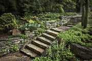 Rock Wall Posters - Garden Steps Poster by Tom Mc Nemar